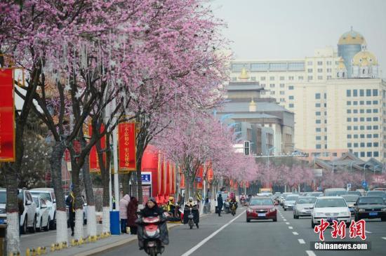 资料图:呼和浩特。中新社记者 刘文华 摄