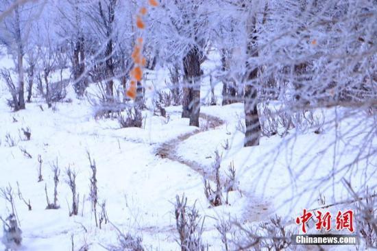 """新疆雾凇小镇""""借雪""""生金 农牧民靠旅游致富"""
