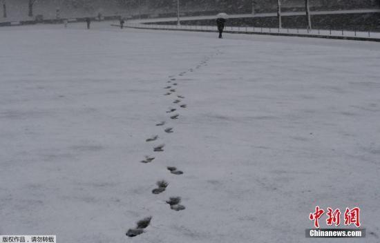 图为东京民众在积雪中留下的脚印。