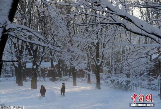 截至当地时22日晚9时,前桥市降下29厘米积雪、长野县松元市积雪20厘米、横滨和水户录得18厘米。图为东京的一个公园内,民众在积雪中遛狗堆雪人。