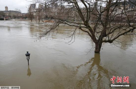 受塞纳河水位上升影响,目前河道航运停止、临河道路和游乐设施关闭,部分铁路站点关闭。图为高涨的河水几乎要将路灯淹没。