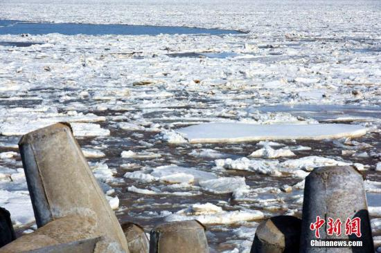 渤海莱州湾的东营近海一片冰封,浮冰外缘线均在离岸3海里以上,最大至10海里。文/梁犇 陈镜旭 高源 图/陈镜旭