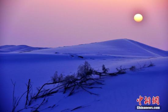 """连日来,新疆南部塔克拉玛干沙漠边缘降下大雪,降雪不仅让空气变得格外清新,而且把西北大漠装扮得分外妖娆。天空是蓝的,雪是白的,一座座金黄色连绵起伏的沙山披上了银装,沙漠红柳和低矮的骆驼刺变成了雾凇,成了大漠晶莹剔透的首饰,在阳光的照耀下闪闪发光,美得让人""""感到窒息""""。李向文 摄"""