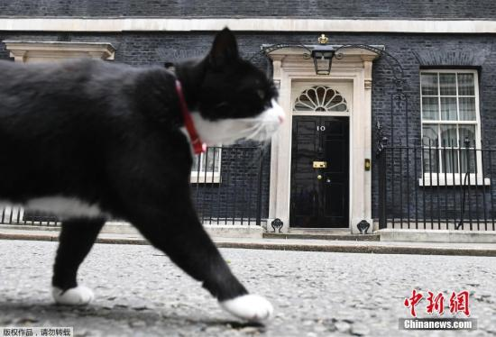 """资料图:英国外交部""""捕鼠官""""帕默斯顿。"""