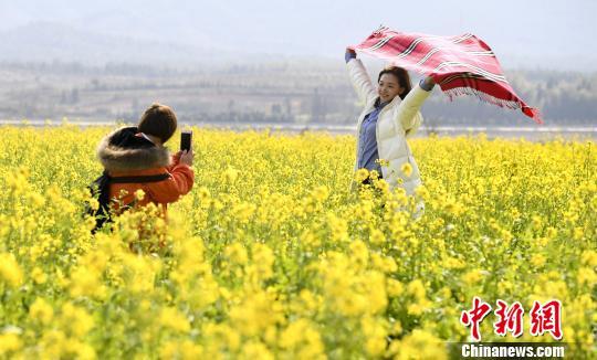 冬将尽,春正来。2月3日,游客在江西省新余市渝水区南安乡高峰村油菜花海内游玩。 周亮 摄