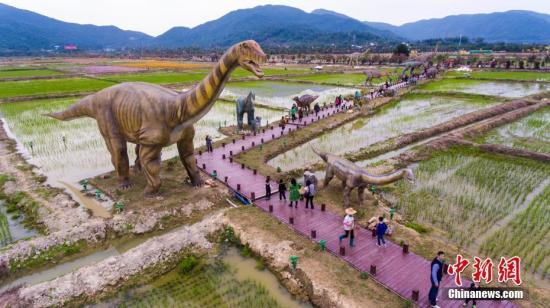 """2月7日,航拍游客在三亚水稻国家公园""""百龙大道""""上观看恐龙模型。据介绍,该公园汇聚了277种323只1:1比例的中国恐龙景观模型,小的不足1米,大的巨无霸高达38米。这些恐龙采用钢骨架、硅胶外表制作,能够转动身体并发出声响,仿真度非常高。<a target='_blank' href='http://www.chinanews.com/'>中新社</a>记者 骆云飞 摄"""