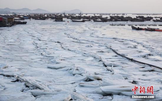 """2月11日,辽宁省大连市金石滩渔港,结冰海域中的渔船被""""冰封""""。受持续低温天气影响,黄渤海进入了本年度严重冰期,给渔业生产带来不利影响。 <a target='_blank' href='http://www.chinanews.com/'>中新社</a>发 刘德斌 摄 图片来源:CNSPHOTO"""