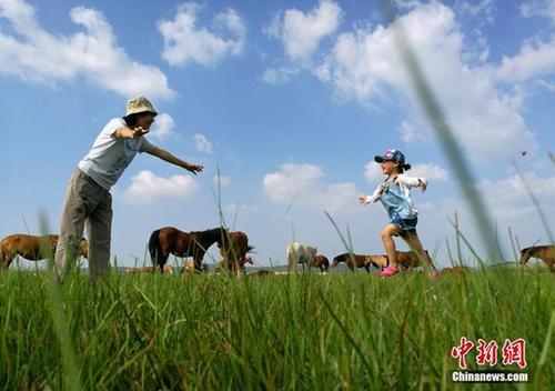 资料图:祖孙俩在塞罕坝机械林场内玩耍。中新社记者 杨可佳 摄