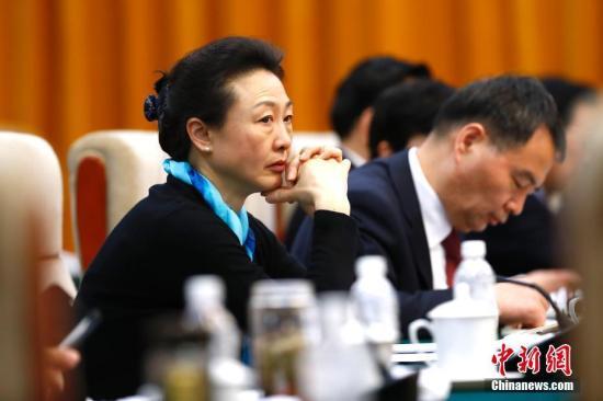 资料图:全国人大代表、国际奥委会委员、中国奥委会副主席李玲蔚参加会议。 中新社记者 富田 摄