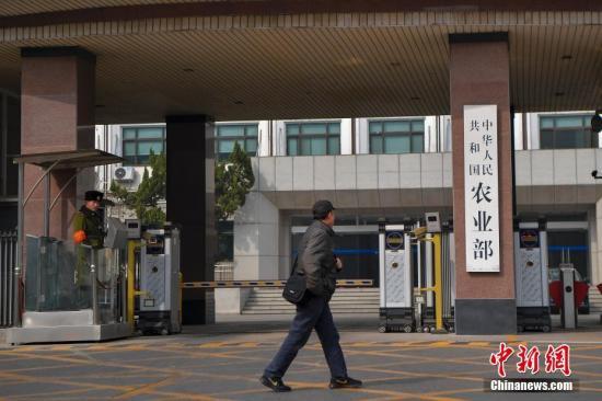 3月13日,一名男子从农业部门前走过。当日,《国务院机构改革方案》提请十三届全国人大一次会议审议。方案提出,组建农业农村部,不再保留农业部。 <a target='_blank' href='http://www.chinanews.com/'>中新社</a>记者 骆云飞 摄
