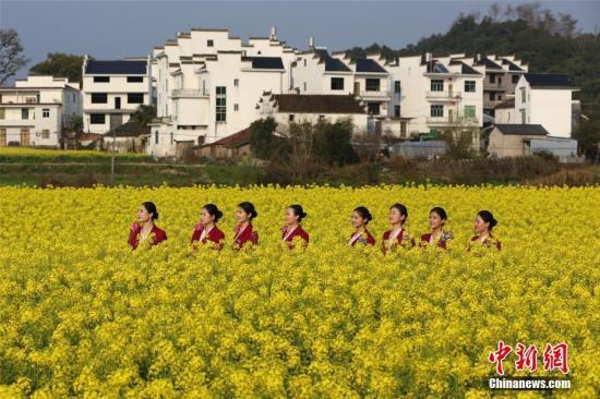 资料图:江西婺源县油菜花盛开。丁波 摄