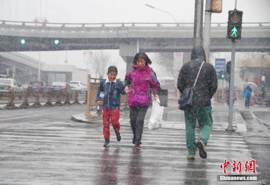 3月17日,北京城区出现降雪天气,结束145天无有效降水日纪录。中新社记者 贾天勇 摄