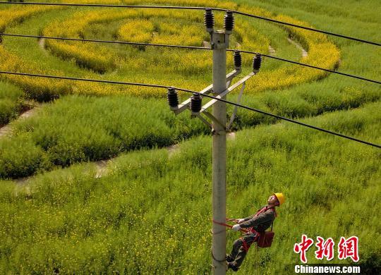 图为重庆电力工人为电网线路设备隐患进行排查。 周毅 摄