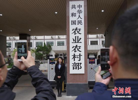 资料图:中华人民共和国农业农村部。 <a target='_blank' href='http://www.chinanews.com/'>中新社</a>记者 贾天勇 摄