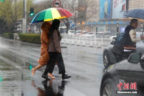 4月4日,雪花飘落京城。 <a target='_blank' href='http://www.chinanews.com/'>中新社</a>记者 富田 摄