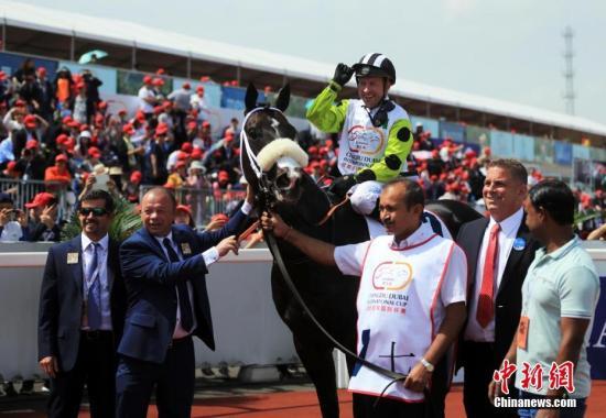 """4月7日,2018第五届""""成都・迪拜国际杯―温江・迈丹赛马经典赛""""在成都温江举行。麻连凯、陈意等5名国内骑手与来自荷兰、英国、爱尔兰、意大利、阿根廷等国的9名外籍骑师和44匹国外赛马展开了激烈的比赛,争夺375万元大奖。此次5场世界级速度冲刺赛为,骑手挑战赛上半场1400米、迈丹让步赛2418米,广厦让步赛骑手挑战赛下半场1600米、成都迪拜国际杯2218米、温江迈丹经典赛1600米等。近年来,温江区按照建设""""全面体现新发展理念宜业宜居宜游的新中心城区""""的战略目标,紧扣""""三医两养一高地""""产业定位,积极响应国家""""一带一路""""倡议,以马为媒推动区域全面开放,加快推进""""五个之城""""建设,先后引进了中..."""