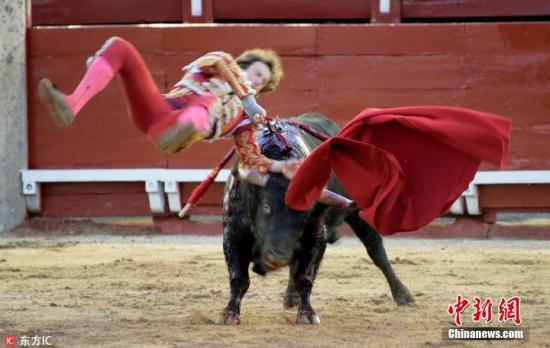 资料图:当地时间2018年4月7日,西班牙托莱多,当地举行公益斗牛赛,斗牛士Roman遭公牛袭击。图片来源:东方IC 版权作品 请勿转载