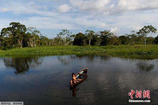 资料图:巴西亚马逊热带雨林。