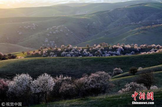 资料图:新疆霍尔果斯。 刘宪国 摄 图片来源:视觉中国