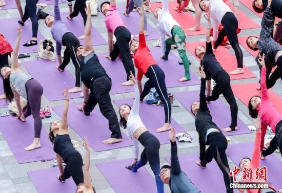 资料图:瑜伽爱好者们进行瑜伽练习。中新社记者 张畅 摄