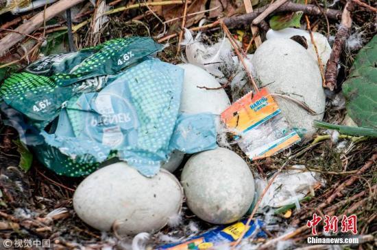 环境污染威胁人类存亡报告:每年逾900万人致死