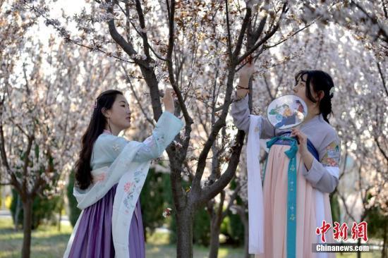 资料图:女大学生身着汉服,在校园内吟诗经、跳汉舞。 陈泊霖 摄