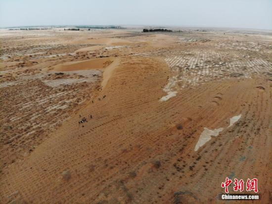 官方授权平台:海内外专家学者齐聚新疆_探讨干旱区生态恢复与荒漠化