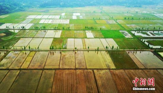 资料图:农村田园风光。 赵春亮 摄