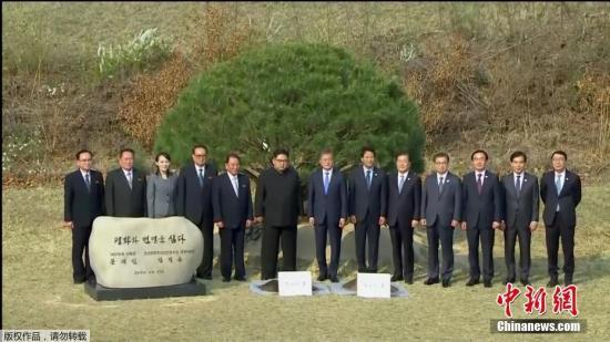 当地时间4月27日,金正恩与文在寅在板门店军事分界线附近共同种下一棵65年树龄的松树,这是一棵停战协定签署那一年——1953年的松树,种树的土分别来自朝鲜和韩国。随后,金正恩用韩国汉江的水浇树,而文在寅则用来自朝鲜大同江的水浇灌树木。韩朝双方领导人还在植树活动现场合影留念。(电视截图)
