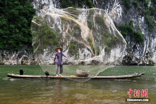 79岁的黄月创正在表演漓江传统渔事。<a target='_blank' href='http://www-chinanews-com.00tube.net/'>中新社</a>记者 俞靖 摄