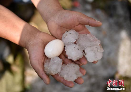 资料图:冰雹。<a target='_blank' href='http://www.yongnian.com/'>中新社</a>发 龙元彬 摄