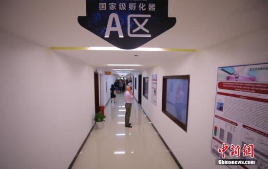 """资料图,一家国家级孵化器楼内驻满了高新机构。""""。<a target='_blank' href='http://www-chinanews-com.sz-chuangshi.com/'>中新社</a>记者 杨可佳 摄"""