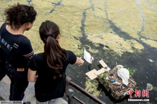 资料图:受污染的水面。