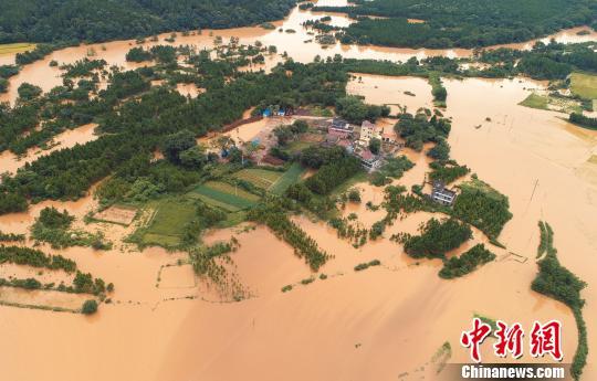 7月7日,江西泰和遭受暴雨侵袭,村庄一片泽国。 邓和平 摄
