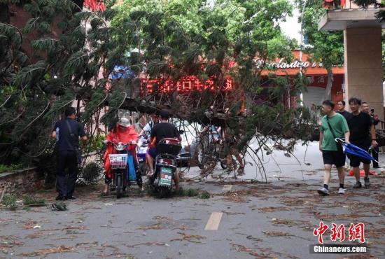 """今年第8号台风""""玛莉亚""""已在福建连江登陆"""