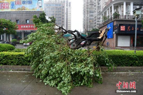 """台风""""玛莉亚""""约14时进入延平闽北已转移人员25133人"""