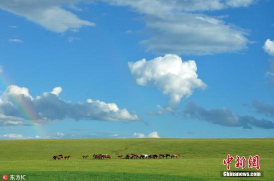 资料图:内蒙古呼伦贝尔草原。 余昌军 摄 图片来源:东方IC 版权作品 请勿转载