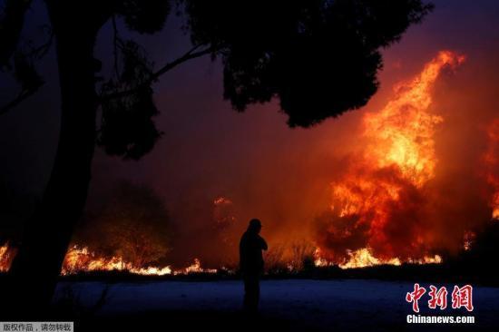 希腊山林大火遇难人数升至74人 中国大使馆发布安全提醒