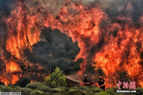 资料图:7月25日消息,据雅典通讯社24日报道,希腊首都雅典附近森林火灾造成的遇难人数升至74人,另有至少20人失踪。图为消防员试图熄灭正在熊熊燃烧的山火。