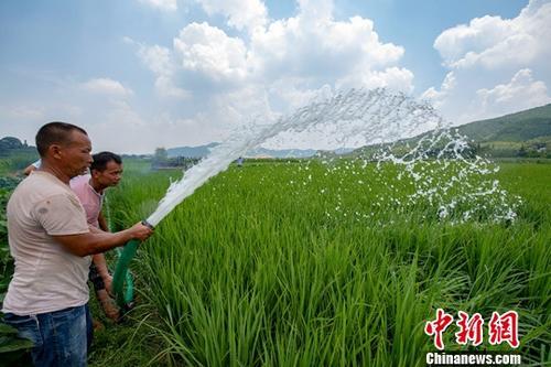 两部门:北方旱情有所缓解 今年已投入抗旱资金32亿