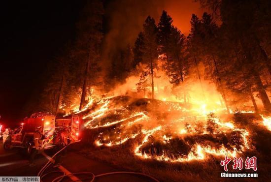 当地时间7月31日发生在美国加州的大火在持续肆虐。