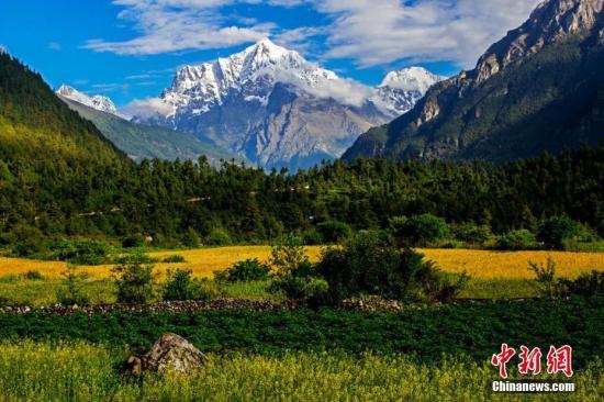 西藏官方:西藏是世界环境质量最好的地区之一
