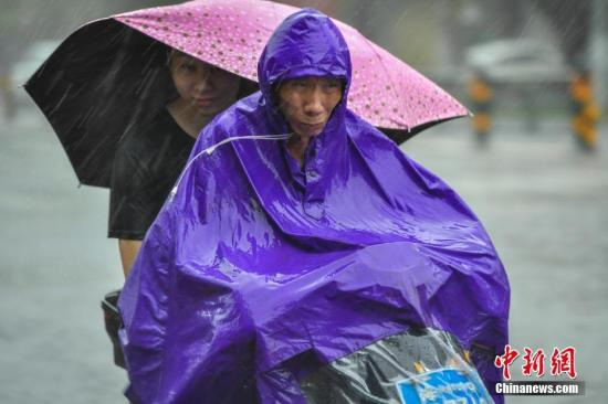 资料图:市民雨中出行。 骆云飞 摄