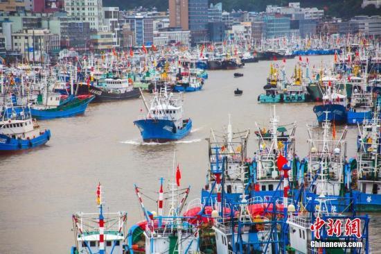 """8月12日下午,受今年第14号台风""""摩羯""""影响,浙江舟山群岛新区沈家门渔港内桅樯林立,泊满了前来避风的渔船。12日上午10时止,舟山全市6144艘渔船全部在港避风。舟山海洋与渔业部门加强了对解禁开捕渔船的监管,防止渔船冒险出海。在渔场台风警报解除之前,所有渔船不得出海生产。泊满了前来避风的渔船。中新社发 姚峰 摄"""