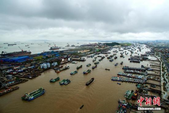 资料图:台风天气在港口避风的渔船。中新社发 姚峰 摄
