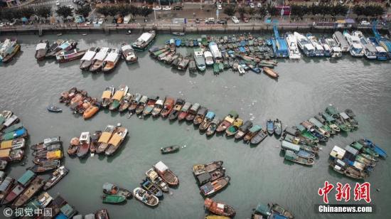 图为8月14日,广东阳江,渔港避风的渔船。 文字来源:南方日报 图片来源:视觉中国