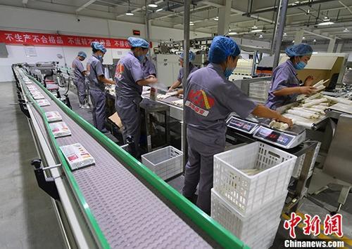 资料图:企业工人正在工作。<a target='_blank' href='http://www-chinanews-com.geektee.net/'>中新社</a>记者 刘新 摄