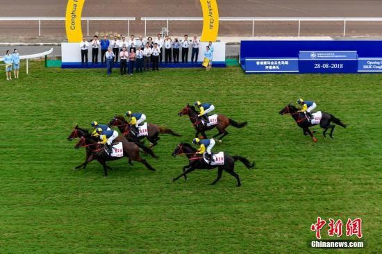 8月28日,香港赛马会从化马场正式启用。香港赛马会从化马场位于广州市从化区,是内地最大规模、最高标准、最为完善的国际马场类综合体,拥有4条跑道、9座马房、20个放草休闲区等施设,为香港沙田马场现役赛马提供训练、饲养等服务。中新社记者 陈骥�F 摄