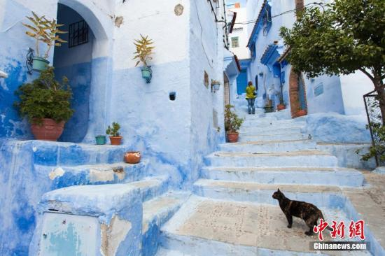 """北非小国摩洛哥是小王子的出生地,是三毛笔下的撒哈拉,更是英格丽·褒曼的《卡萨布兰卡》。很多游客迷醉与这里充满异域风情的""""蓝调"""",人文环境与自然美景的双重诱惑,也让这个北非小国涌入越来越多的游客。图为摩洛哥舍夫沙万的街景。 图片来源:图虫创意"""