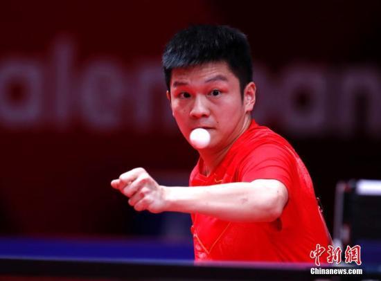 资料图:中国乒乓球选手樊振东。 /p中新社记者 刘关关 摄